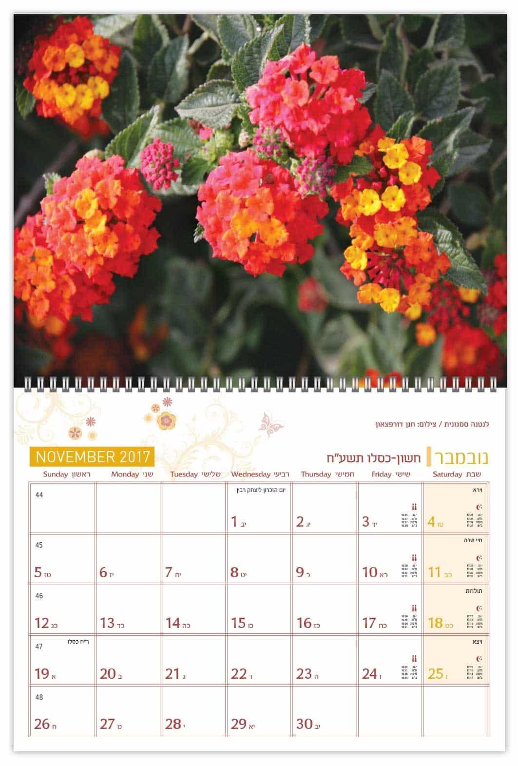 לוח קיר פרחים וצומח בישראל
